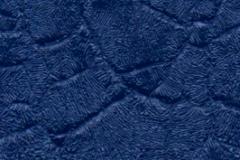 bluecrocodile