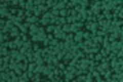 greenmolotok