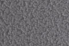 greymolotok